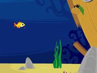 Fi-fish